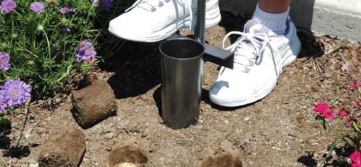 Best Bulb Planter Reviews