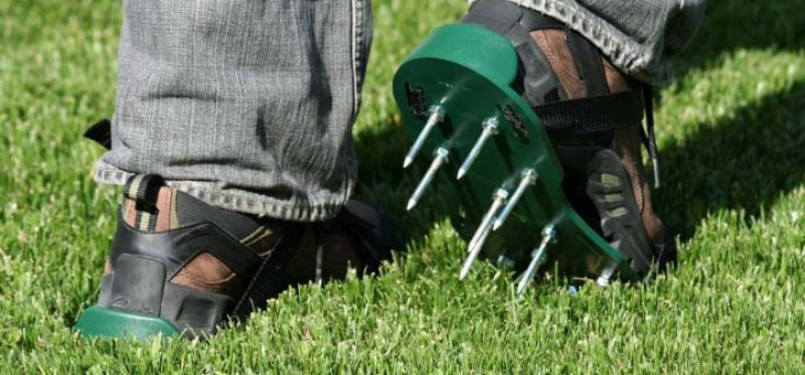 My Best Lawn Aerator Shoes Help To Make My Grass Healthy