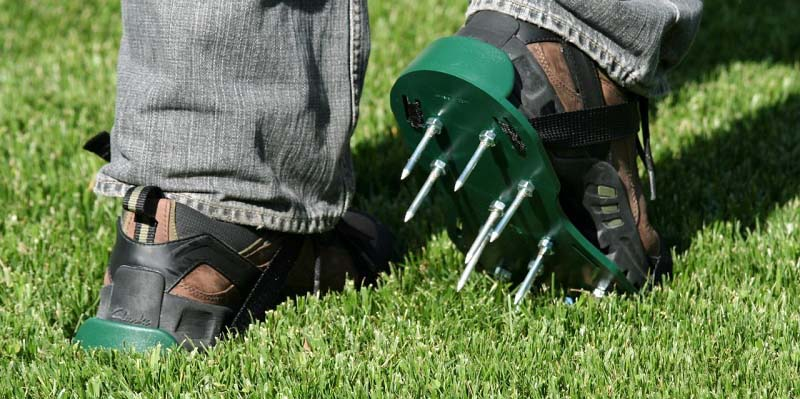 Best Shoes For Lawn Mowing