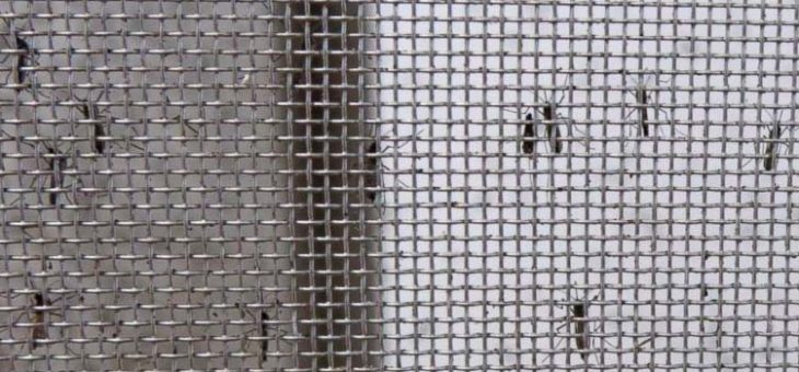 Keep Flies and Mosquitoes Out with the Best Magnetic Screen Door