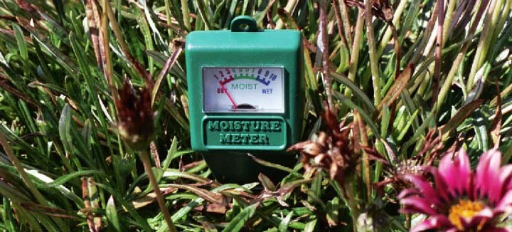 Conserve Water With The Best Soil Moisture Meter